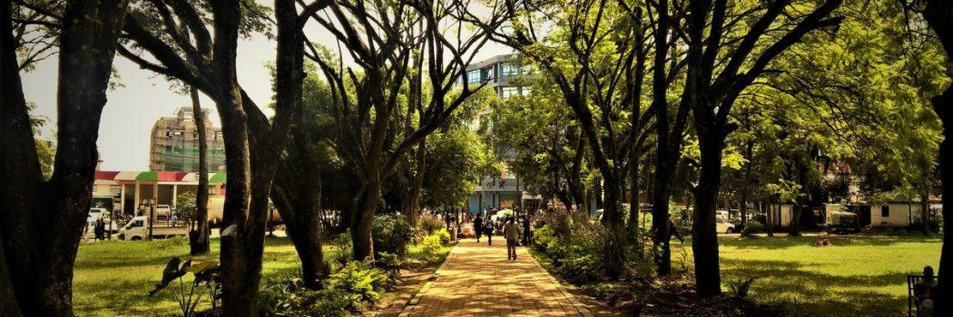 Sights [Muliro Gardens, Kakamega]